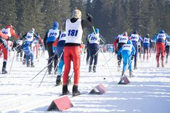 I corridori preparano per la maratona Gli atleti stanno all'inizio, al riscaldamento ed all'aspettare il fischio per iniziare la  immagini stock