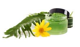 I cosmetici scremano nel barattolo verde Immagine Stock