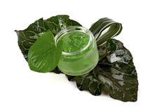 I cosmetici scremano nel barattolo verde Fotografia Stock