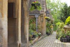 I cottage di Cotswolds con i giardini anteriori di estate fioriscono fotografia stock libera da diritti