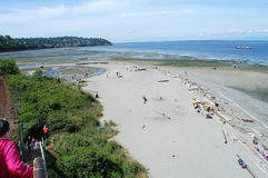 I Could Walk on the Floor of Puget Sound! Royalty Free Stock Photo