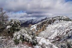 La sierra cubierta de di Nevada nieve Immagine Stock