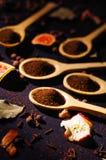 I cucchiai rustici di legno del primo piano hanno riempito con la polvere fresca della tisana, altri tè e le spezie nel fondo, mo Fotografie Stock Libere da Diritti