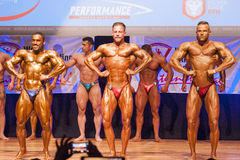 I culturisti maschii flettono i loro muscoli per mostrare la loro costituzione fisica Immagine Stock