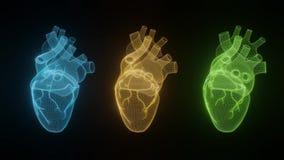 i cuori del wireframe 3D rendono gli ambiti di provenienza bianchi isolati, le linee astratte della forma dell'icona del cuore ed illustrazione di stock
