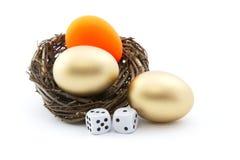 I dadi e l'uovo di nido rosso riflettono il rischio d'investimento Immagini Stock
