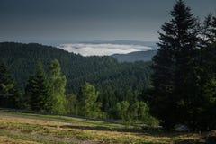 I de Beskidy bergen royaltyfri foto