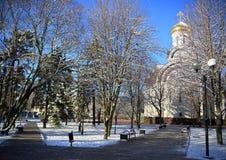 I de första solstrålarna På Rostovet-On-Don parkera, mars Royaltyfri Bild