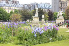 I de Tuileries trädgårdarna fotografering för bildbyråer