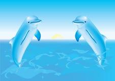 I delfini che saltano dal mare Immagine Stock Libera da Diritti