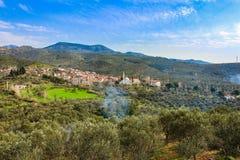 By i den blåa himlen för skog fotografering för bildbyråer