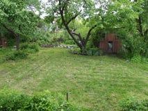 I den gamla trädgården klippta gräsmattor Royaltyfria Foton