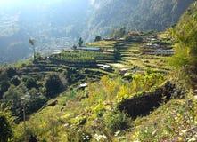 By i den HimalayasbergAnnapurna treken arkivfoto
