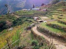 By i den HimalayasbergAnnapurna treken royaltyfria bilder