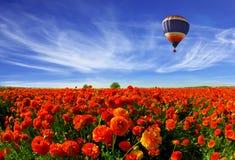 I den molniga mångfärgade himmelflygballongen Arkivbild