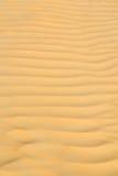 i den Oman texturlinjen våg Royaltyfri Bild