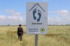I den Schleswig-Holstein nationalparken nordlig Tyskland Fotografering för Bildbyråer