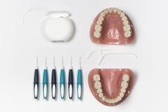 I denti falsi hanno visualizzato accanto a filo per i denti Fotografia Stock
