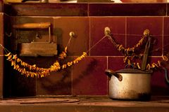 I det gamla köket med champinjoner Royaltyfri Bild