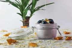 I detta foto kan vi se en handgjord blåbäryoghurt med blåbär, mandlar och honung som faller in i yoghurten Dekorerat med royaltyfri bild