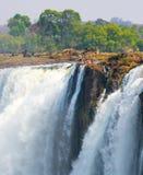 I diavoli si riuniscono sull'orlo di Victoria Falls con la gente che bagna Fotografie Stock