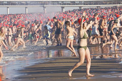 I did it; First Year Dive at Scheveningen. NETHERLANDS, Den Haag: The annual tradition of the New Year's Dive (Nieuwjaarsduik) takes by some 10,000 people in Royalty Free Stock Photo