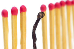 I am different. Matches on a row with one burned, isolated on white background Stock Photography