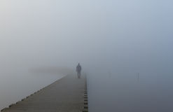 In i dimman Royaltyfri Foto
