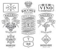 I distintivi e le icone del vino anneriscono su bianco C stabilita Immagini Stock