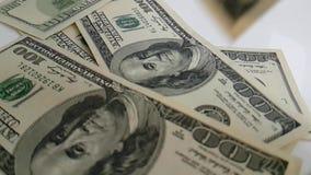 I dollari volano su un fondo bianco archivi video