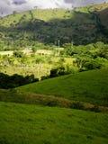 By i Dominikanska republiken Arkivfoton