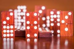 I domino con sfuocato collega nella parte posteriore Fotografie Stock Libere da Diritti