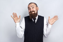 I Dont Know. Handsome businessman with beard and handlebar mustache looking at camera and confused. Studio shot, on gray background royalty free stock photo
