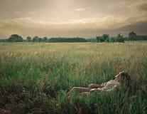 I ett fält Arkivfoton