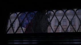 I ett fönster med droppar går folket i regnet med paraplyer ultrarapid 1920x1080, full hd arkivfilmer