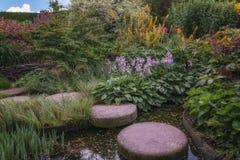 I ett hörn av trädgården Arkivfoton