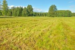 I fältet en gång klipps gräset Arkivbild