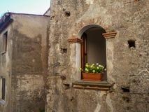 I fönstret av en gammal grå tegelstenbyggnad finns det en brun kruka med ljusa gula blommor och grön lövverk, Maratea arkivfoton