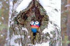 I fördjupningen av trädet dolde en leksakuggla som gjordes av ull, bundet för att leka med hans spela för händer arkivbild