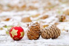 I förväntan av den mystiska magiska julen Arkivbilder