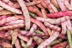 I fagiolini verdi rossi mettono su contro del mercato dell'alimento Fotografia Stock Libera da Diritti