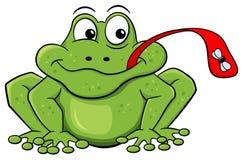 I fermi della rana volano con la sua lingua Fotografie Stock