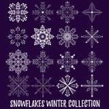 I fiocchi di neve vector l'insieme Fotografie Stock