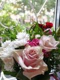 I fiori è la mia vita La mia vita è fiori fotografia stock