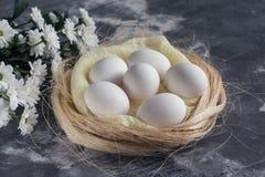 I fiori bianchi con il pollo eggs in nido su fondo di pietra grigio Concetto di festa di Pasqua e della primavera con lo spazio d Fotografia Stock