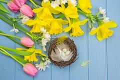 I fiori colorati primaverili con il ` s dell'uccello annidano la decorazione Fotografia Stock