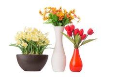 I fiori della camomilla della margherita isolati su bianco Fotografia Stock
