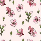 I fiori di vettore ornano la mandorla di rosa delle mattonelle illustrazione vettoriale
