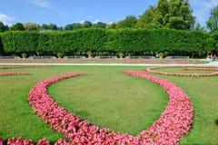 I fiori fioriscono al giardino del palazzo di Mirabell a Salisburgo, Austria Immagine Stock Libera da Diritti