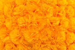 I fiori gialli artificiali hanno allineato con un fondo in orizzontale Fotografia Stock